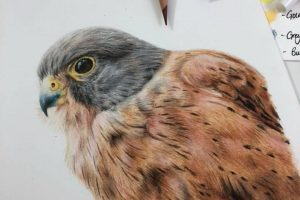 kestrel-tutorial