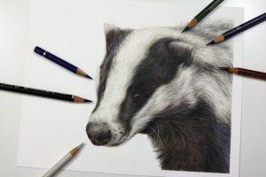 badger-tutorial