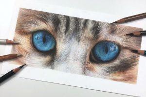 blue-cat-eye-double-study