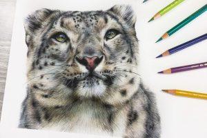 snow-leopard-tutorial