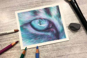 blue-tonal-cat-eye-study