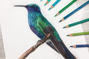 hummingbird-tutorial