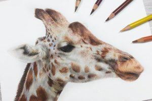 giraffe-tutorial
