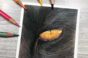 black-cat-eye-study