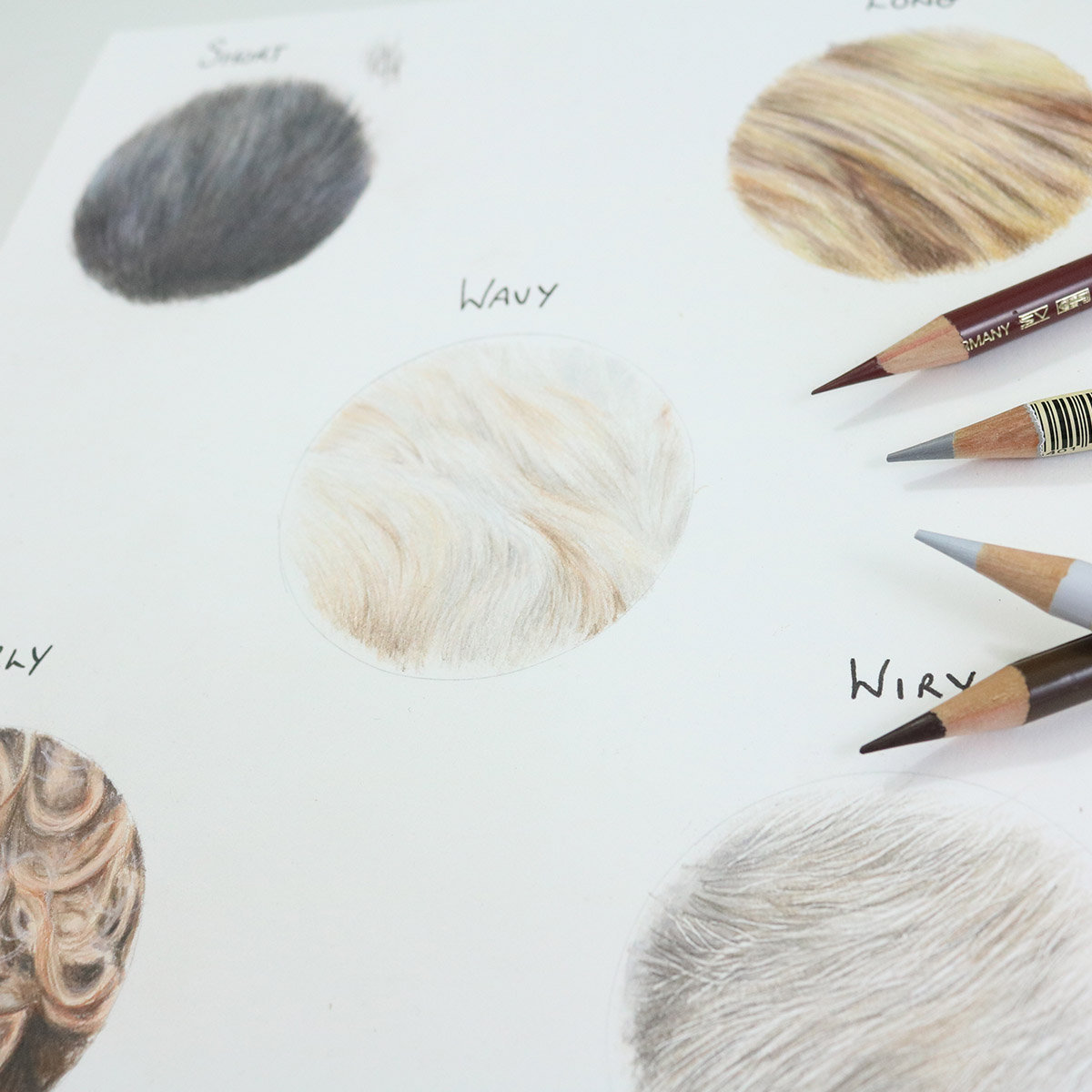 Well thought out and clear tutorials are exactly what re on offer which helps you avoid mistakes and grow your ability