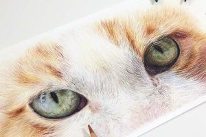 green-cat-eye-double-study