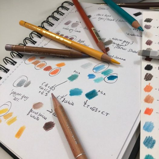 Having the right tools is essential and I guide you to find pencil and paper heaven to step up your coloured pencil work