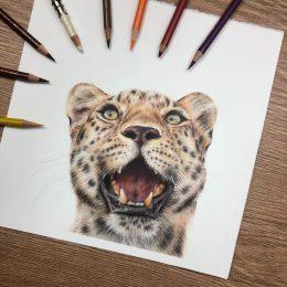Leopard Tutorial