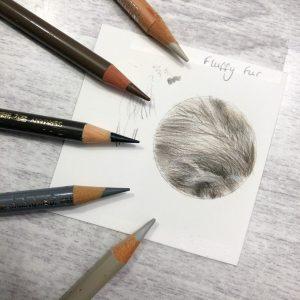 fluffy-fur