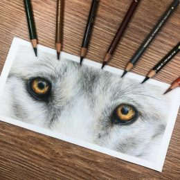 Wolf Eyes Tutorial