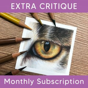 Extra Critique/Guidance Subscription Add-On