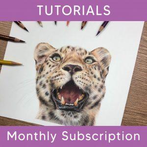 Monthly Tutorial Membership